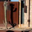 Desert Cactus | www.ravenswork.com