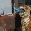 Tiger vs T-rex | www.robertfeist.com