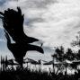 Phoenix Sculpture, by Steve Thomas, Nepenthe, Big Sur, California
